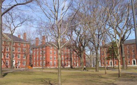 Τα καλύτερα Πανεπιστήμια του κόσμου, 2013