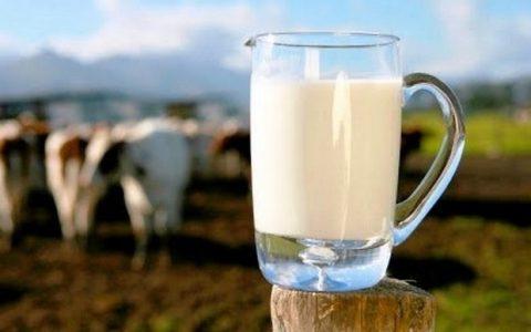 1ο Βαλκανικό Φεστιβάλ Γάλακτος