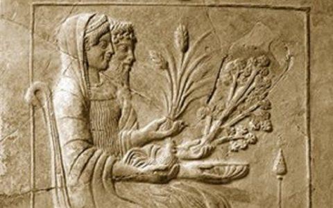 Το σιτάρι, η ζέα και το κουτόχορτο