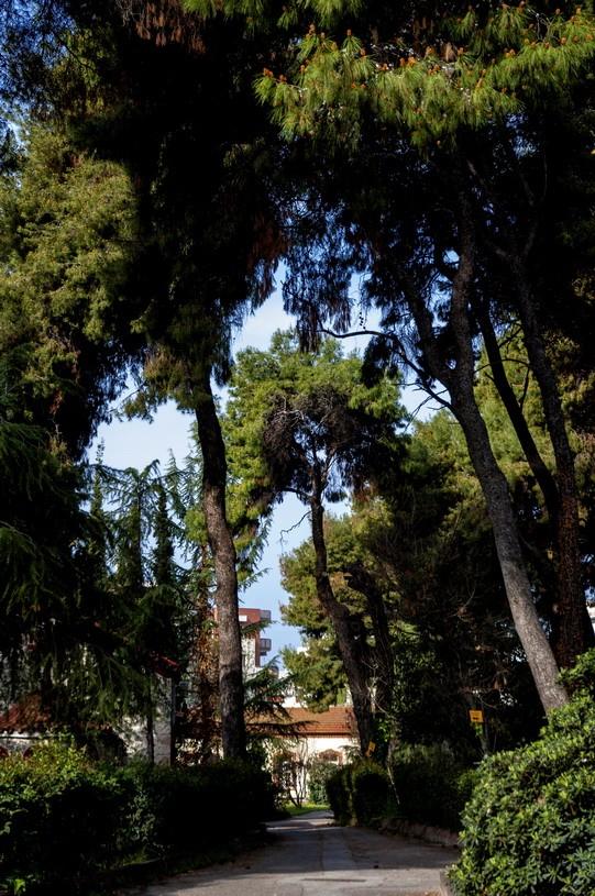 Vila-Allatini-Thessaloniki-15