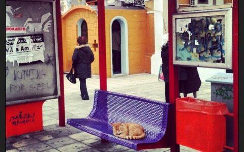 Σάββας Κατσέας, Thessaloniki my home