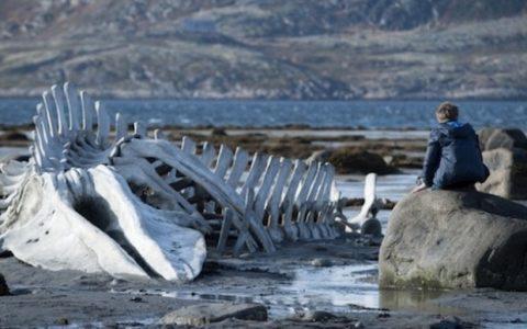 Leviathan (Leviafan), κριτική ταινίας