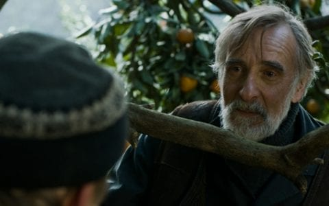 Tangerines (Mandariinid), κριτική ταινίας