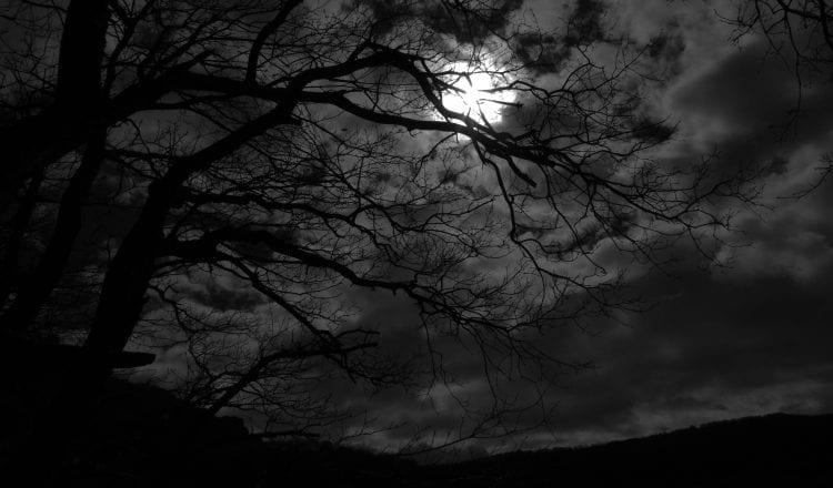 Είναι κάτι νύχτες, από την Αλκυόνη Παπαδάκη