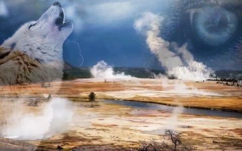 Πώς οι λύκοι αλλάζουν τα ποτάμια