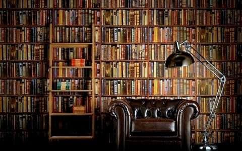 Η ανάγνωση ενός βιβλίου «ακονίζει» τον εγκέφαλο όσο και ένα παιχνίδι