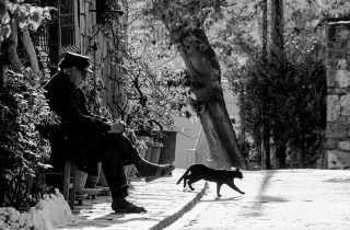 ©Giannis Parisis