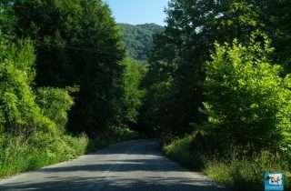 Μια καταπράσινη διαδρομή.