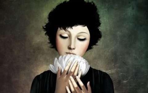 Artist: Christian Schloe, blossoms