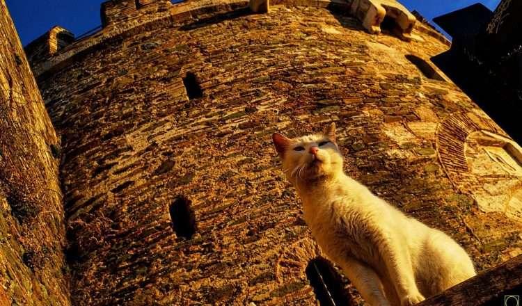 Κάστρα Θεσσαλονίκης: επιλεγμένες φωτογραφίες από 40 φωτογράφους!