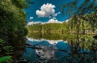 ©Lambros Kazan: στη Λίμνη στο Ωραιόκαστρο