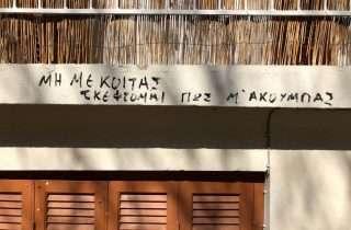 ©Dimitris Symeonidis22