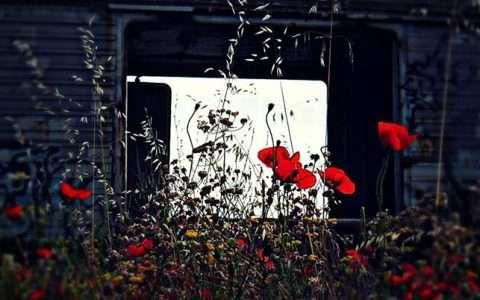 Νεκροταφείο βαγονιών - νεκροταφείο αναμνήσεων, από την Ερωδίτη Παπά