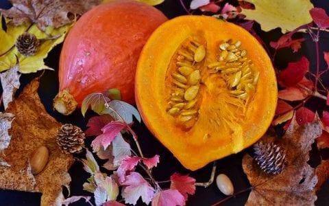 Πού μπορείτε να βρείτε δωρεάν σπόρους ντόπιων παραδοσιακών ποικιλιών