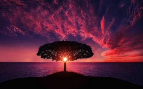 Για ένα ηλιοβασίλεμα, από τον Νίκο Σουβατζή