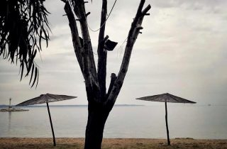©Efi Zerbouli