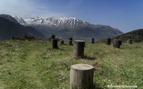 Ursa trail, εξαιρετικά μονοπάτια στο Μέτσοβο