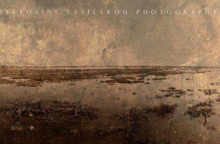 ©Effrosini Vasilarou