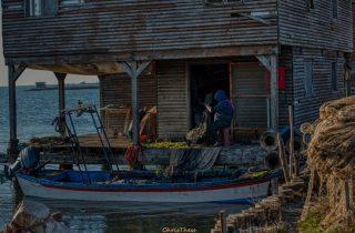 ©Kalogiannidis Christos Christhess