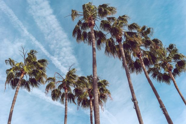 Έξω κάνει καλοκαίρι, από την Κατερίνα Ψωμαδέλη