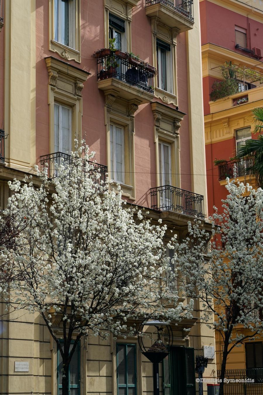 Napoli: μέρες και νύχτες μαγικές!