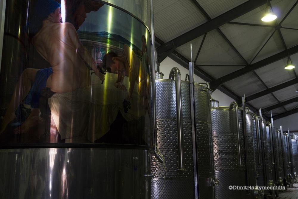 Μια βόλτα στα οινοποιεία της Δράμας: Nico Lazaridi