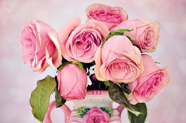 Χανς Κρίστιαν Άντερσεν: Τα λουλούδια της μικρής Αίντα