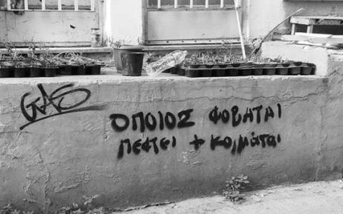 Θεσσαλονίκη: 10+1 φορές που η αλήθεια γράφτηκε στους τοίχους