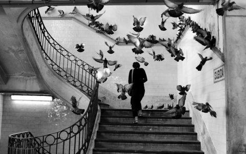 Henri Cartier-Bresson: ο Tolstoy της φωτογραφίας