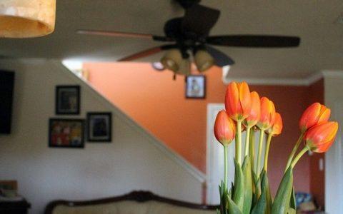 Ανοιξιάτικη καθαριότητα; Δες τη λίστα που θα κάνει το σπίτι σου να λάμπει!