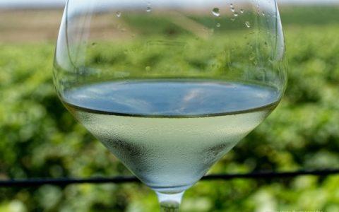 Λίγο κρασί... Λίγο κρασάκι βρε παιδιά...