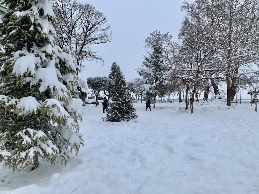 Χιονισμένη πλατεία Εληάς, Βέροια 2021