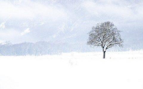 Χιονίζει, της Αρσινόης Βήτα