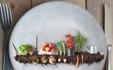 Plant Based διατροφή: Πόσο ωφελεί την υγεία μας;