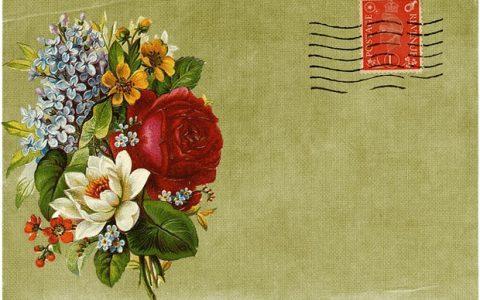 Γουέντι Κόουπ: Λουλούδια