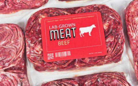 Τι είναι το κρέας εργαστηρίου;