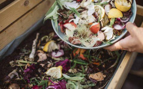Σπατάλη Τροφίμων: Δεν θες να πετάς το φαγητό σου... μέρος β΄